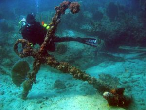 Fort Lauderdale Dive Sites and Spots