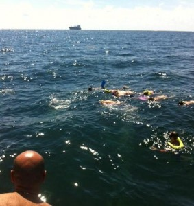 Sea Experience Fort Lauderdale Engagement Dive Snorkel Charter
